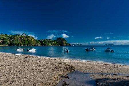 A boat trip to Waiheke